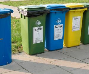 Платить за мусор: штрафы в разных странах мира